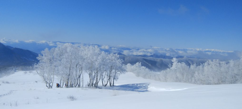 四阿山(厳冬期の雪歩き)